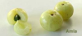 Amla Früchte