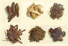 Ayurvedische Kräuter und Wurzeln